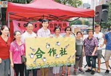 東方日報|2015年7月5日 團體冀港府推合作社概念